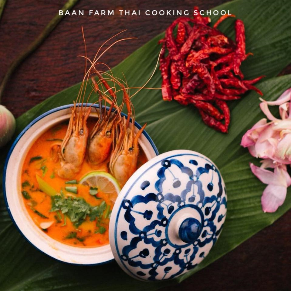 One Day Lanna Kingdom Elephany Sanctuary ( No Riding ) + Beautiful Orchid Farm + Cooking Class Tour.